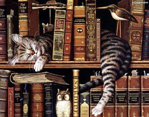 ksiazki-piacy-kot-regal-300x236 Moje czytelnicze zwyczaje