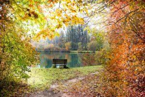 autumn-986350_960_720-300x200 Podsumowanie października