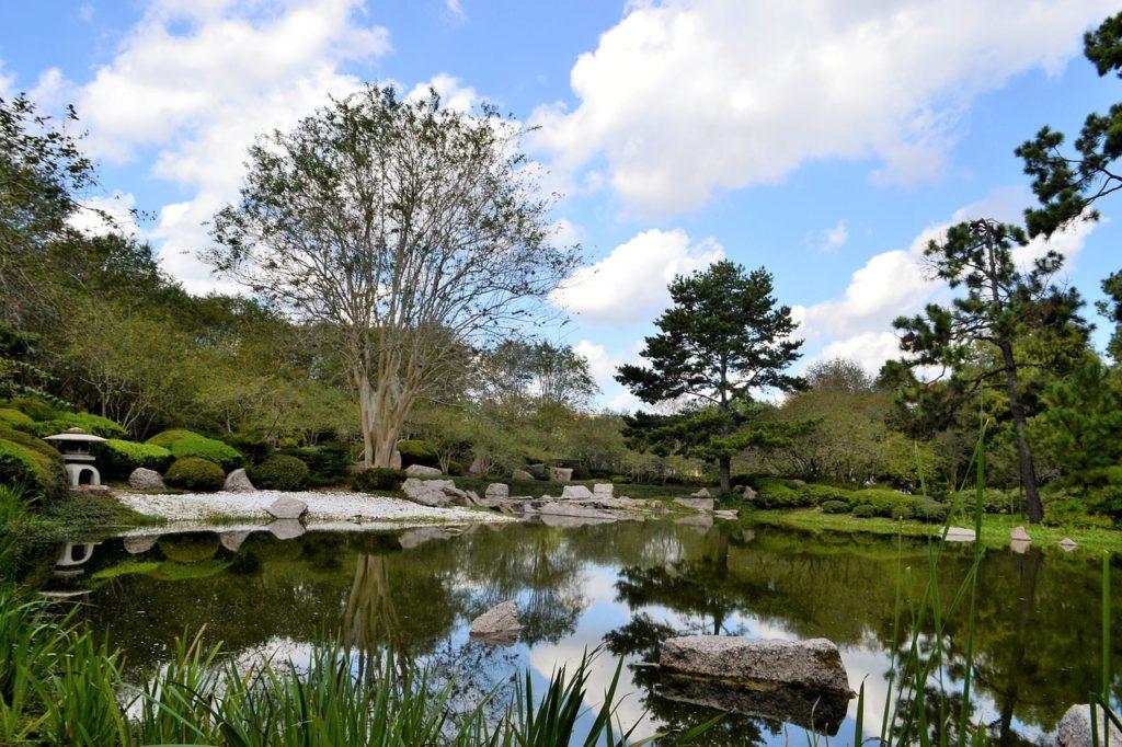 botanical-garden-2834180_1280-1024x682 Podsumowanie kwietnia